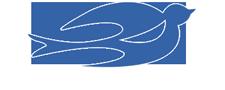 Công Ty TNHH Dịch Vụ - Thương Mại Tân Nhạn Dương